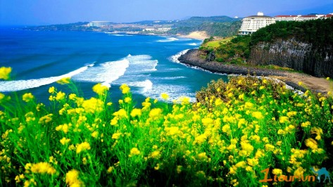 Danh sách các nước miễn Visa cho người Việt 1