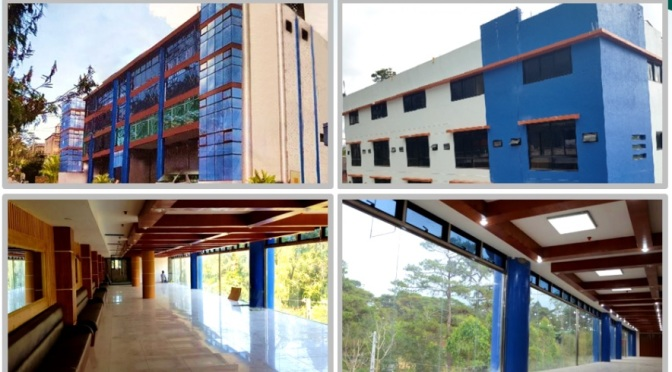 PINES Main New Campus – Cơ sở mới thay thế Cooyeesan tiện nghi, cao cấp, xanh trong