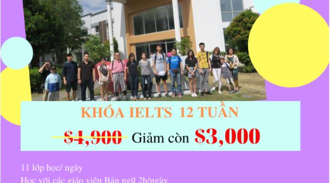 Tin được không? Du học IELTS trọn khóa chỉ 3.000$/12 tuần học