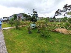 Khu vườn